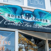 NY 360 Tours: House of Colour Tattoo