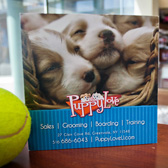 NY 360 Tours: Puppy Love LI